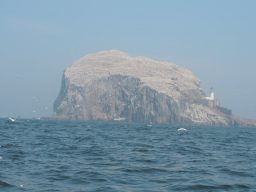 Bass Rock in North Berwick, a great place to have Walking Holidays in the UK