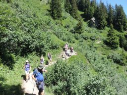 Guests loving walking in the French alps