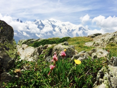 image: views to Mont Blanc