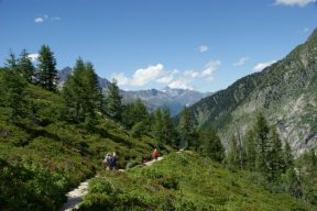 A gentle walk up from Les Houches on a sunny day